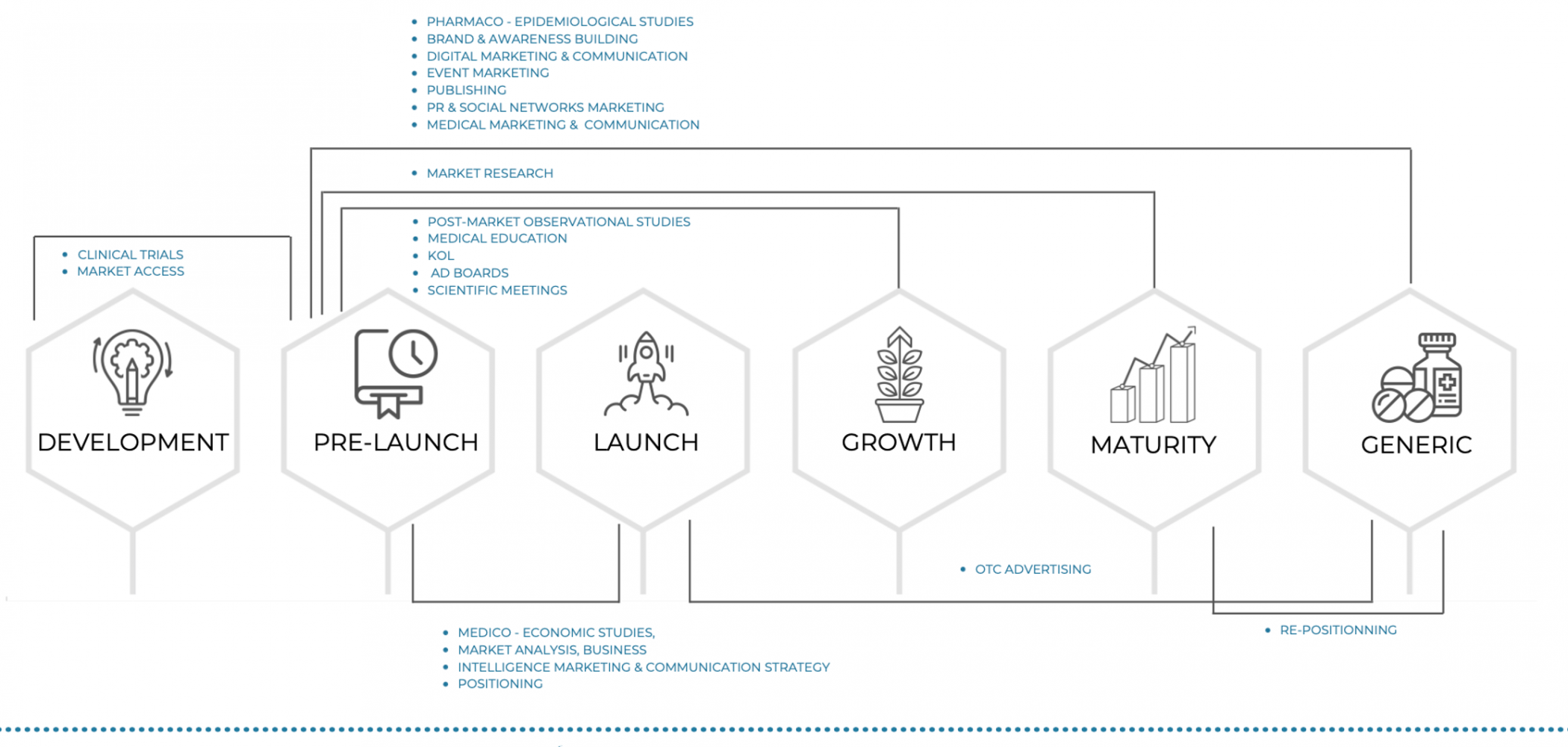Vivactis group value chain